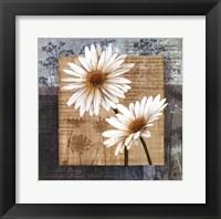 Framed Daisy Field II
