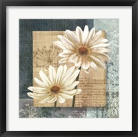 Framed Daisy Field I