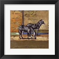 Framed Serengeti Zebra