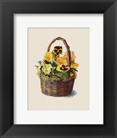Framed Sunshine Pansy Basket
