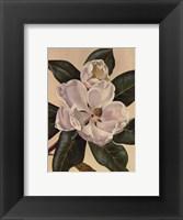 Framed Afternoon Magnolia