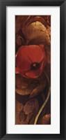 Framed Tulip Shadow III