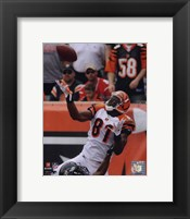 Framed Terrell Owens 2010 Action