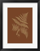 Framed Sepia Ferns on Brick (WG) III