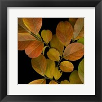 Framed Small Vivid Leaves I