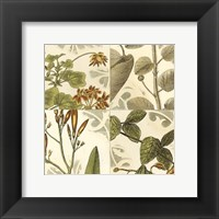 Framed Small Botanical Quadrant I (P)
