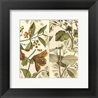 Framed Small Botanical Quadrant II (P)