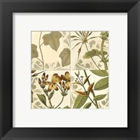 Framed Small Botanical Quadrant III (P)