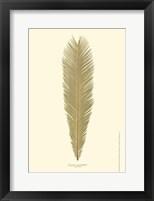 Framed Small Sago Palm I (P)