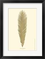 Framed Small Sago Palm II (P)