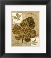 Framed Mini Leaf Collage IV (ST)
