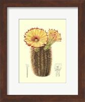 Framed Flowering Cactus I