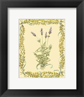 Framed Small Lavender