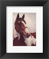 Registered Paint Framed Print