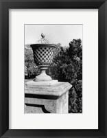 Framed Garden Elegance VI