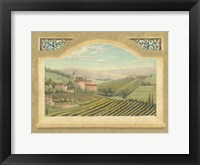 Framed Vineyard Window II