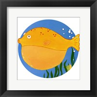 Billy the Blowfish Framed Print