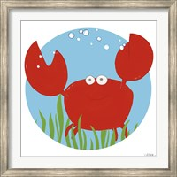 Framed Calvin the Crab