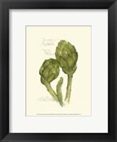 Tuscany Artichoke Framed Print