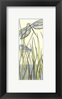 Framed Small Gossamer Dragonflies I (P)