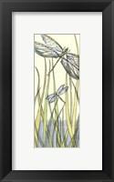 Framed Small Gossamer Dragonflies II (P)