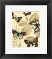 Sm. Graphic Butterflies I (P) Framed Print