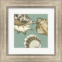 Framed Small Shell Trio on Blue III (P)
