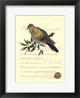 Framed Small Romantic Dove I