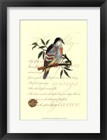 Framed Small Romantic Dove II