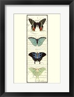 Framed Small Butterfly Prose Panel II