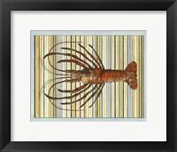 Framed Seashore Lobster