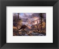 Framed Eagles Perch