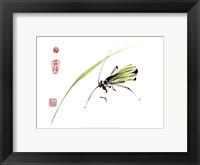 Framed Grasshopper