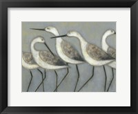 Framed Shore Birds I