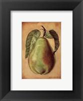 Framed Williams Pear