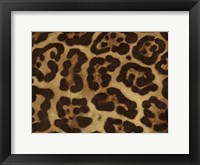 Framed Spots I