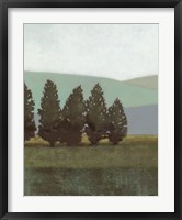 Framed Evergreen I