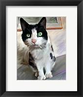 Framed Pretty Girl Cat