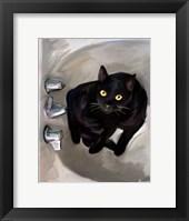 Framed Black Cat Lookin'
