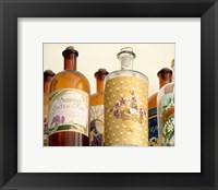 Framed French Perfume Bottles II
