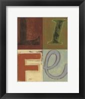 Framed Life