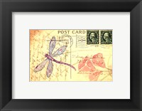 Framed Postcard Dragonfly I