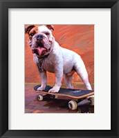 Framed Bull Dog Nose Grind