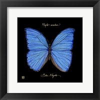 Framed Striking Butterfly I