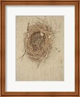 Framed Nesting I