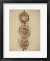 Framed Nesting II