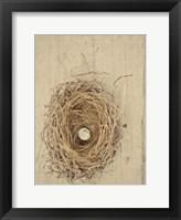 Framed Nesting III