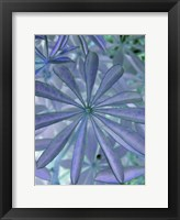 Framed Woodland Plants in Blue I