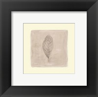 Leaf Impression l Framed Print
