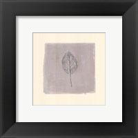Leaf Impression lV Framed Print
